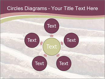 Australian Landscape PowerPoint Template - Slide 78