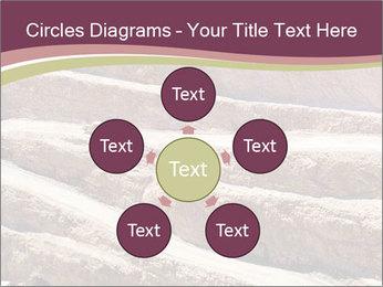 Australian Landscape PowerPoint Templates - Slide 78
