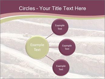 Australian Landscape PowerPoint Template - Slide 79