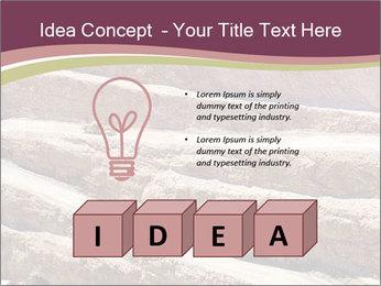 Australian Landscape PowerPoint Templates - Slide 80
