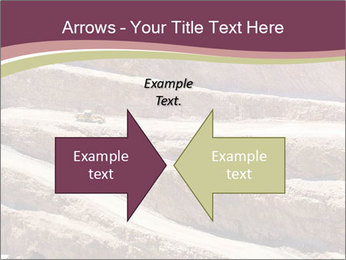 Australian Landscape PowerPoint Template - Slide 90