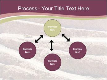 Australian Landscape PowerPoint Template - Slide 91