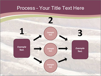 Australian Landscape PowerPoint Templates - Slide 92