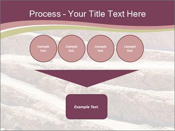 Australian Landscape PowerPoint Template - Slide 93