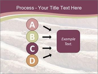 Australian Landscape PowerPoint Template - Slide 94