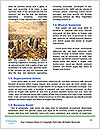 0000089345 Word Template - Page 4