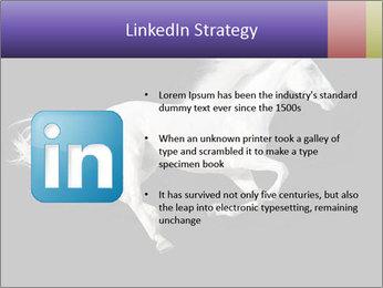 White Running Horse PowerPoint Templates - Slide 12