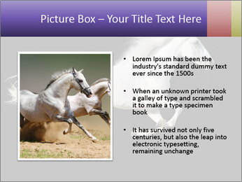 White Running Horse PowerPoint Template - Slide 13