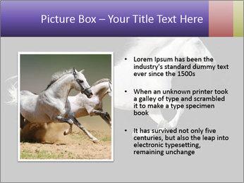 White Running Horse PowerPoint Templates - Slide 13