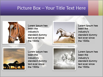 White Running Horse PowerPoint Template - Slide 14