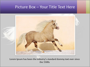 White Running Horse PowerPoint Template - Slide 15