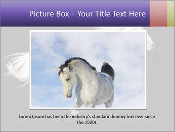 White Running Horse PowerPoint Templates - Slide 16