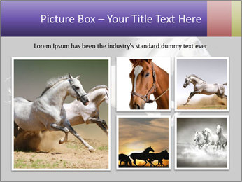 White Running Horse PowerPoint Template - Slide 19