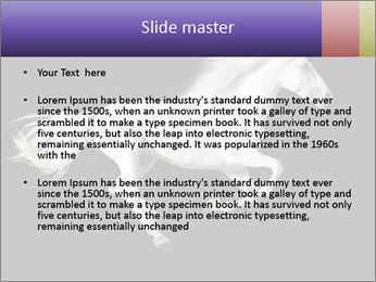 White Running Horse PowerPoint Templates - Slide 2