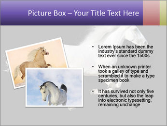 White Running Horse PowerPoint Template - Slide 20