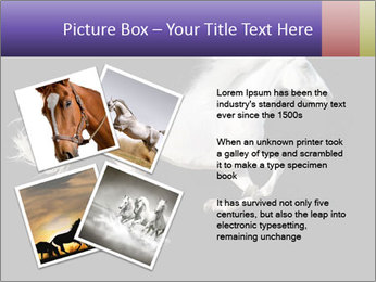 White Running Horse PowerPoint Template - Slide 23