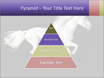 White Running Horse PowerPoint Template - Slide 30