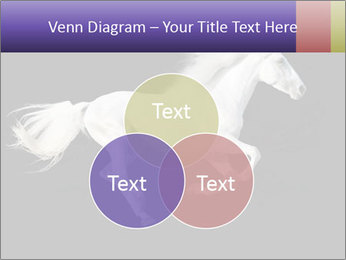 White Running Horse PowerPoint Templates - Slide 33