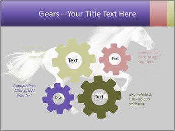 White Running Horse PowerPoint Templates - Slide 47