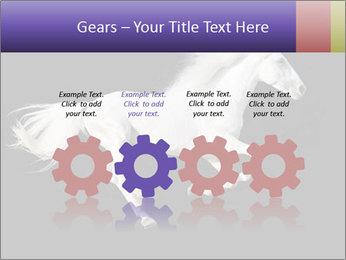 White Running Horse PowerPoint Templates - Slide 48