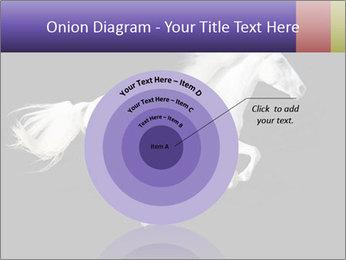 White Running Horse PowerPoint Templates - Slide 61