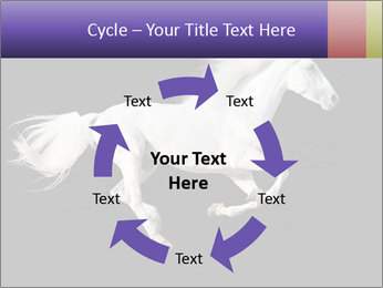 White Running Horse PowerPoint Templates - Slide 62