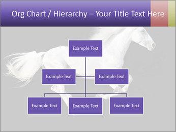 White Running Horse PowerPoint Templates - Slide 66