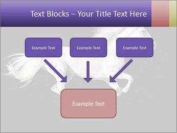 White Running Horse PowerPoint Templates - Slide 70