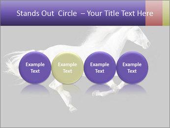 White Running Horse PowerPoint Templates - Slide 76