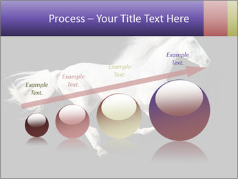 White Running Horse PowerPoint Templates - Slide 87