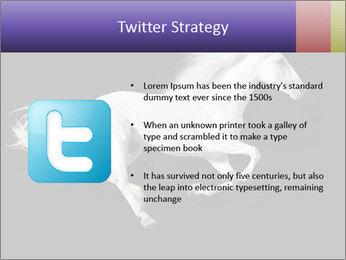White Running Horse PowerPoint Templates - Slide 9