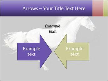 White Running Horse PowerPoint Templates - Slide 90