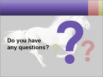 White Running Horse PowerPoint Templates - Slide 96
