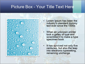 Trees In Water Drops PowerPoint Template - Slide 13