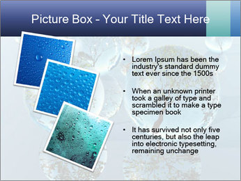 Trees In Water Drops PowerPoint Template - Slide 17