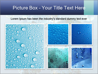 Trees In Water Drops PowerPoint Template - Slide 19