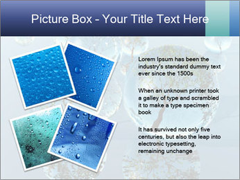 Trees In Water Drops PowerPoint Template - Slide 23