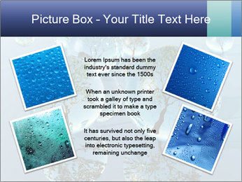 Trees In Water Drops PowerPoint Template - Slide 24