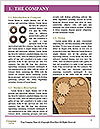 0000089355 Word Template - Page 3