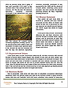 0000089357 Word Templates - Page 4