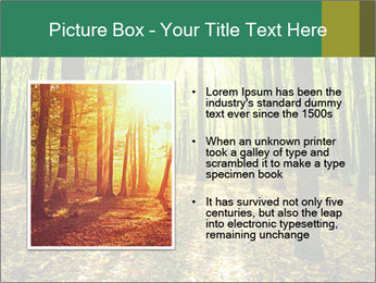 Green Forest PowerPoint Templates - Slide 13