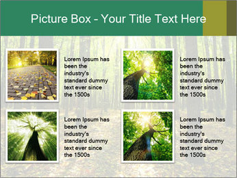 Green Forest PowerPoint Templates - Slide 14