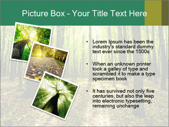 Green Forest PowerPoint Templates - Slide 17