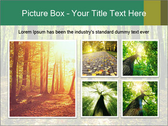 Green Forest PowerPoint Templates - Slide 19