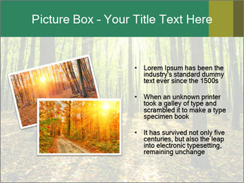 Green Forest PowerPoint Templates - Slide 20