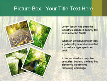 Green Forest PowerPoint Templates - Slide 23