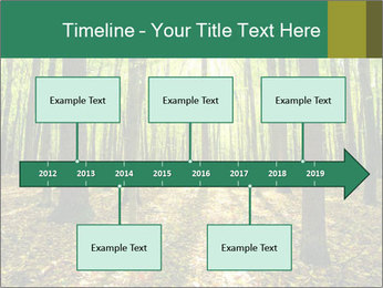 Green Forest PowerPoint Templates - Slide 28