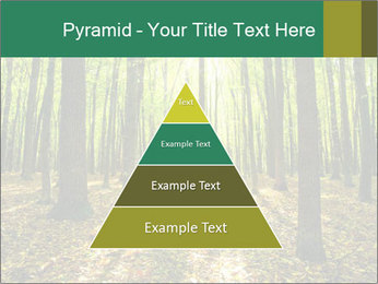 Green Forest PowerPoint Templates - Slide 30