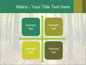 Green Forest PowerPoint Templates - Slide 37