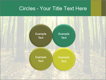 Green Forest PowerPoint Templates - Slide 38